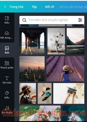 Canva vs Adobe Spark: So sánh thư viện hình ảnh
