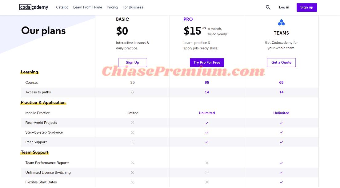 Chi phí đăng ký tài khoản Codecademy Pro