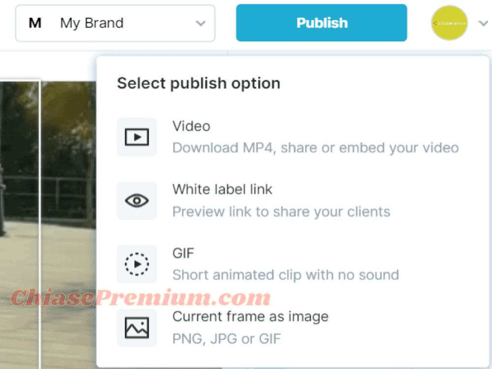 Publishing Options | Wave.video
