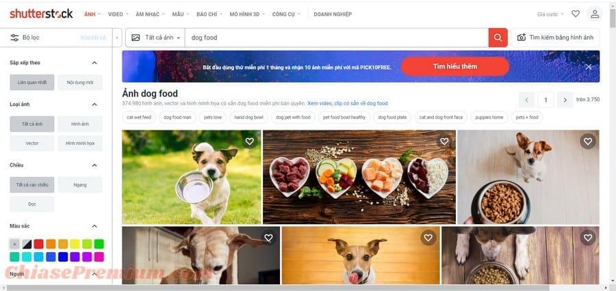 Shutterstock có tốt không