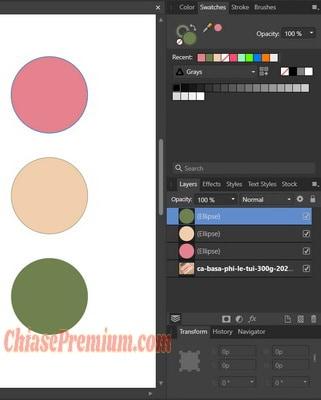Bảng Swatches sẽ lưu lại những mẫu màu mà bạn đã sử dụng Color Picker Tool để hút màu gần đây