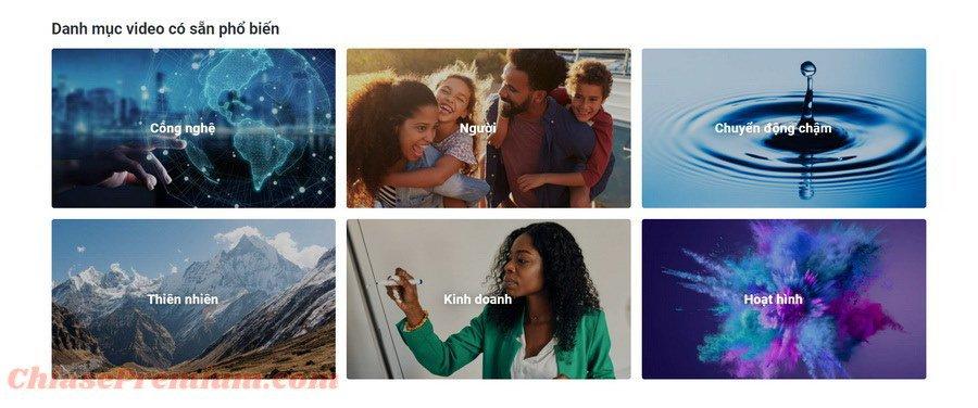 Danh mục video có sẵn tại Shutterstock