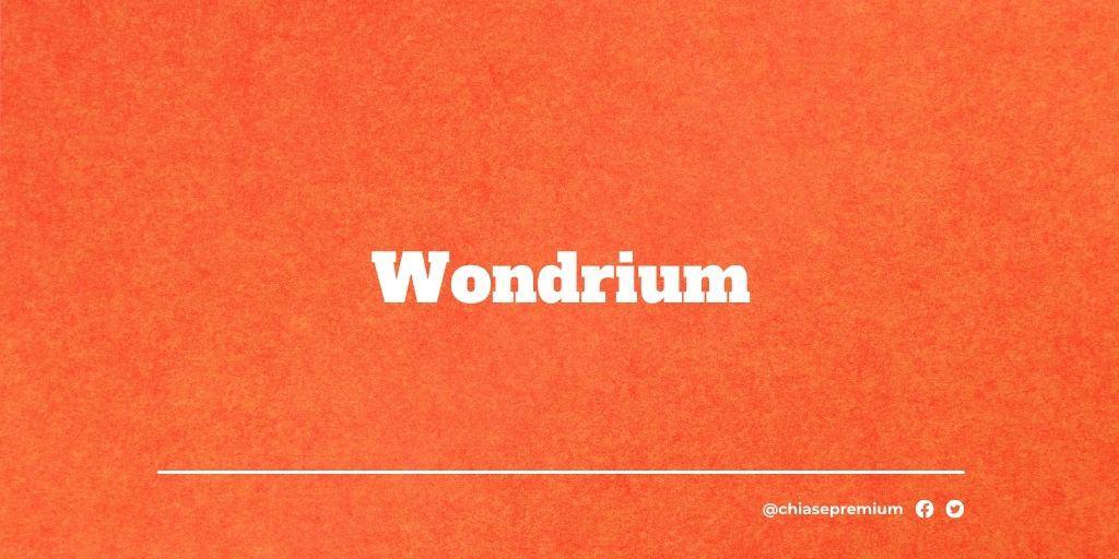 Wondrium-deal